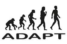 Adapt to Survive - DDM Creative